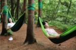 의료진 숲 치유22.jpg